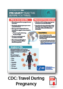CDC Travel During Pregnancy