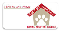 2nd Chance Dog Shelter