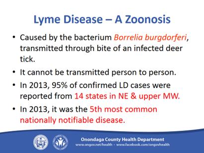 Lyme Disease 3