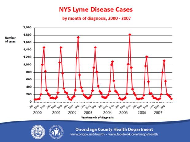 Lyme Disease 7