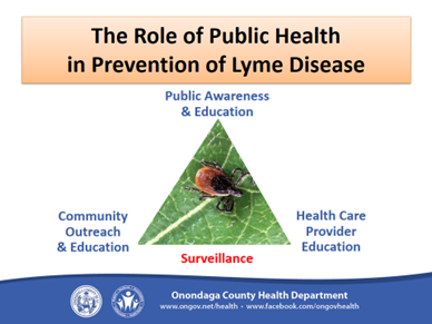 Lyme Disease 14